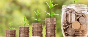 Investeren | Aestate